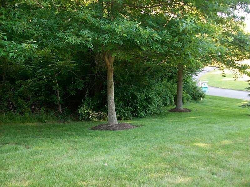 LOT 313 Old Indian Trail