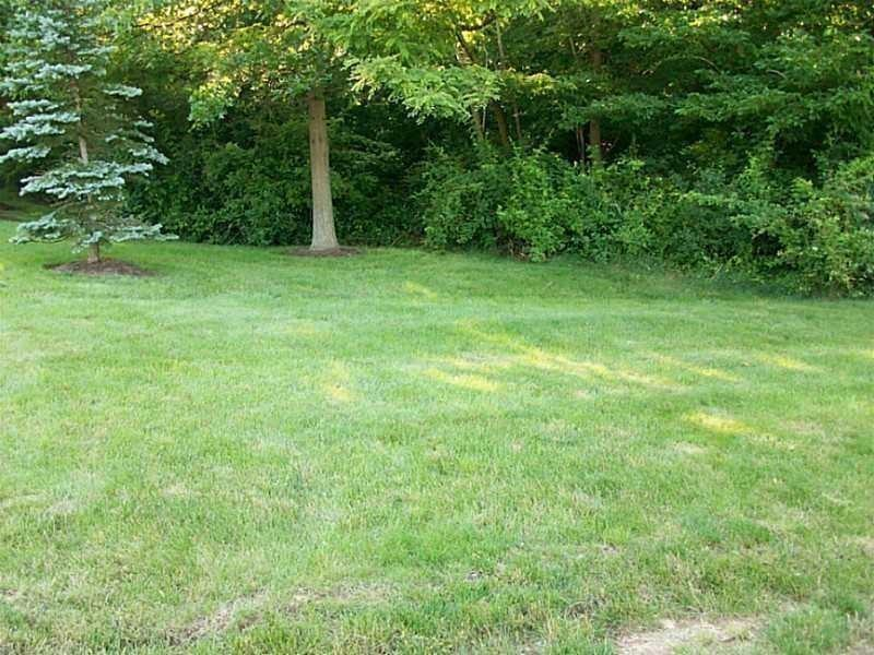 LOT 313 Old Indian Trail Photo 1