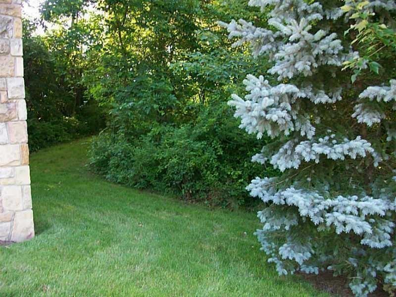 LOT 313 Old Indian Trail Photo 2